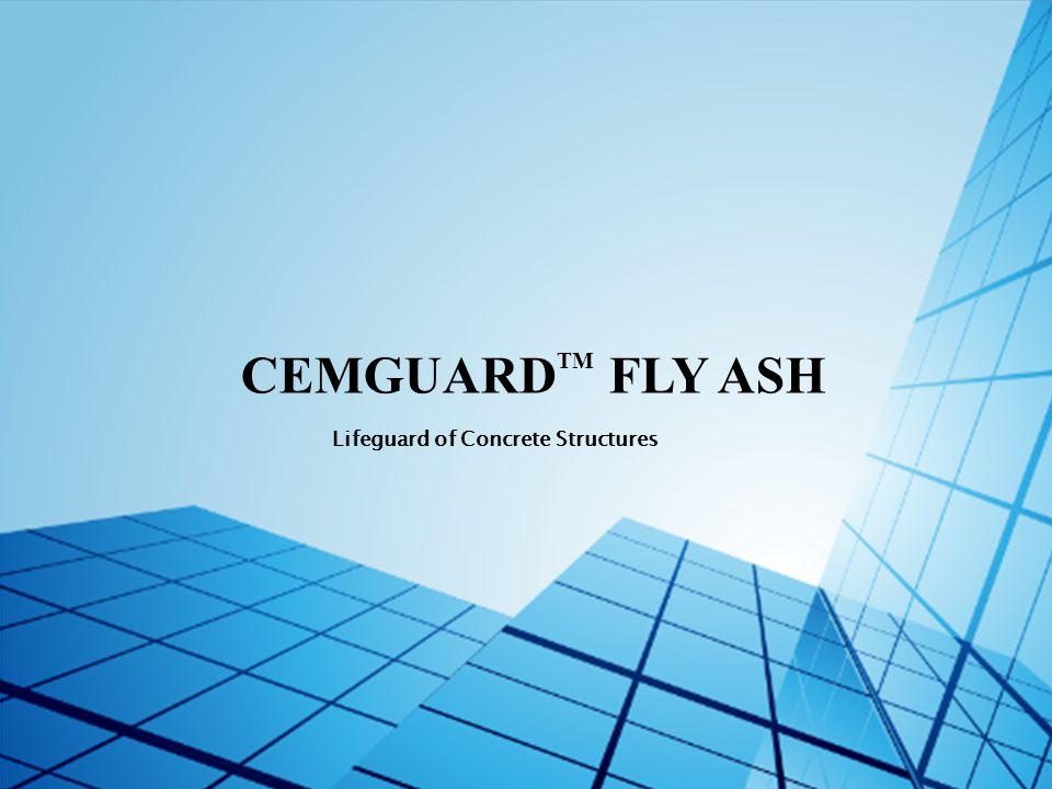 CEMGUARD TM FLY ASH Lifeguard of Concrete Structures
