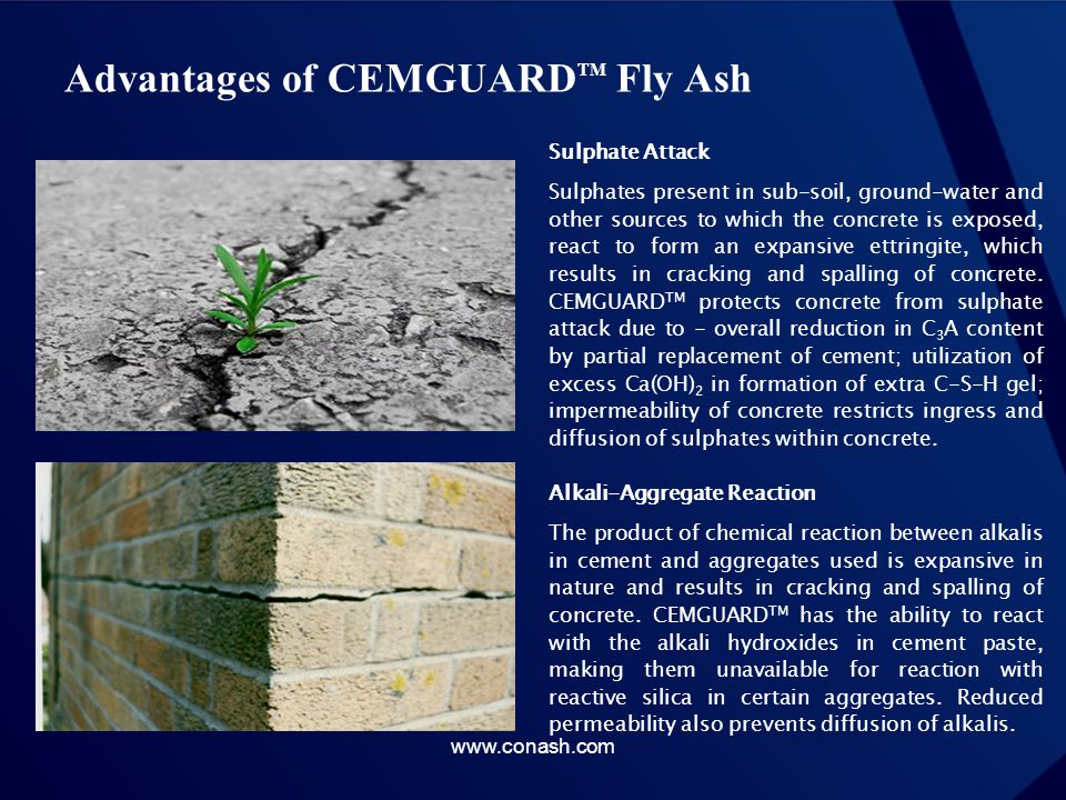 Advantages of CEMGUARD TM Fly Ash Sulphate Attack Sulphates present in sub-soil, ground-water and other sources to which the concrete is exposed, reac