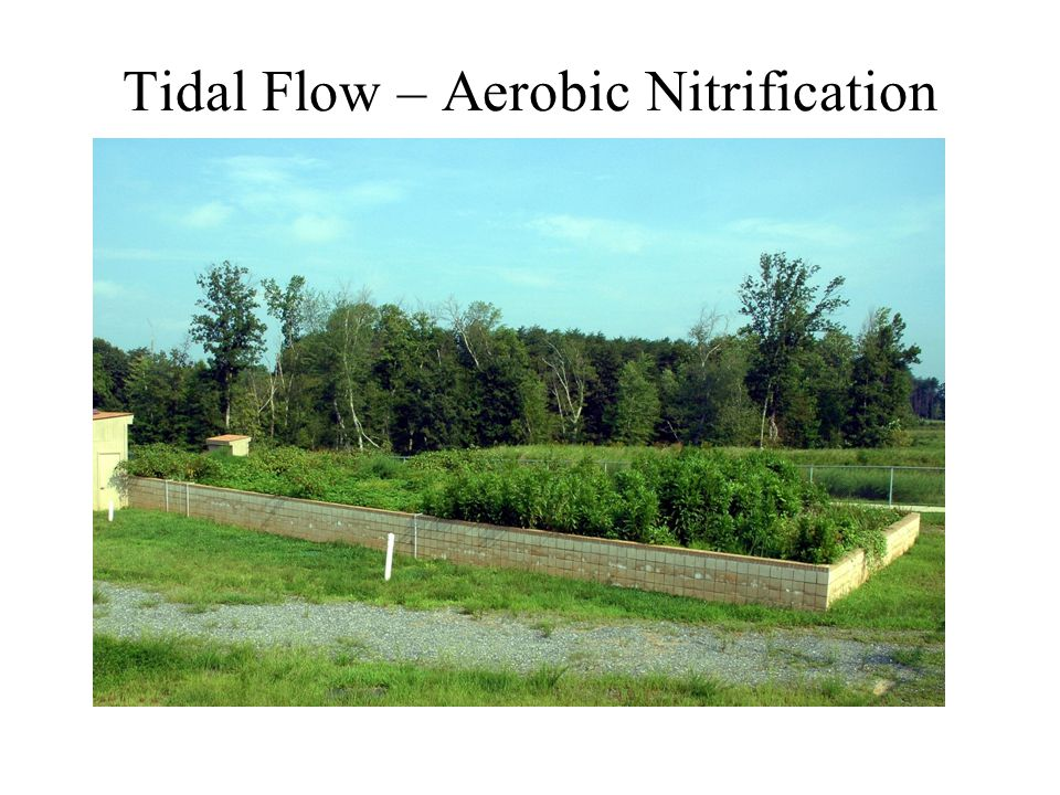 Tidal Flow – Aerobic Nitrification