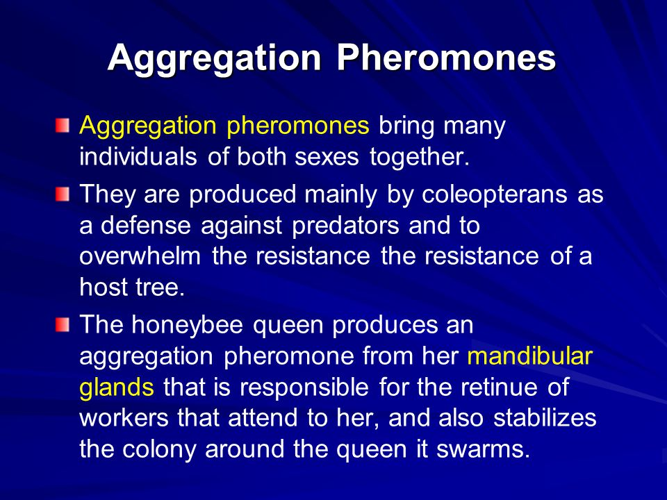 Aggregation Pheromones Aggregation pheromones bring many individuals of both sexes together. They are produced mainly by coleopterans as a defense aga