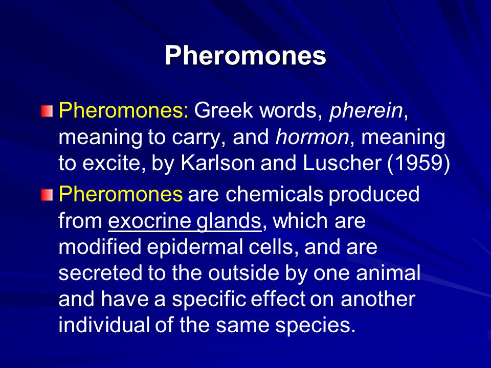Pheromone Inactivation and Clearing of the Receptor Pheromones are attacked and destroy by enzyme (e.g.