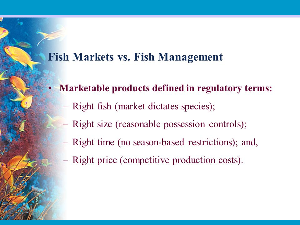 Fish Markets vs.