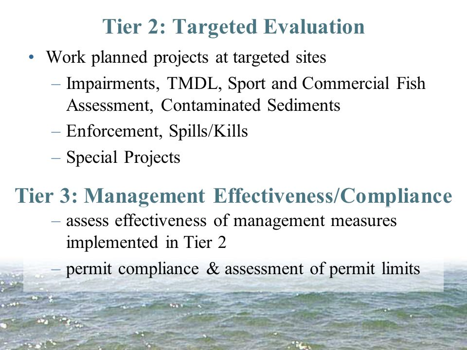 Tier 2: Targeted Evaluation Work planned projects at targeted sites –Impairments, TMDL, Sport and Commercial Fish Assessment, Contaminated Sediments –Enforcement, Spills/Kills –Special Projects Tier 3: Management Effectiveness/Compliance –assess effectiveness of management measures implemented in Tier 2 –permit compliance & assessment of permit limits