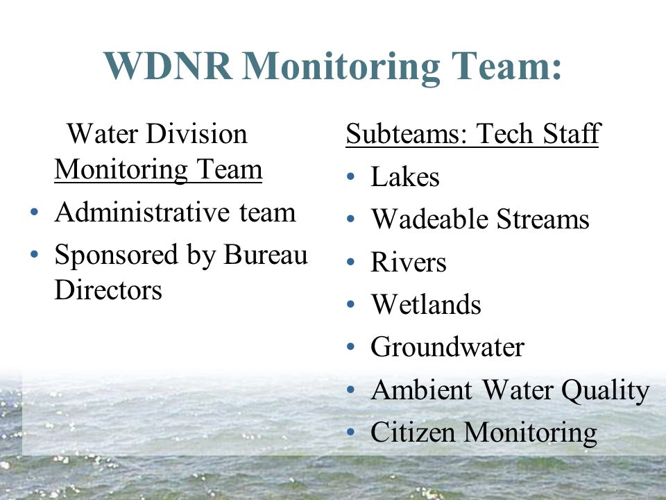 WDNR Monitoring Team: Water Division Monitoring Team Administrative team Sponsored by Bureau Directors Subteams: Tech Staff Lakes Wadeable Streams Rivers Wetlands Groundwater Ambient Water Quality Citizen Monitoring