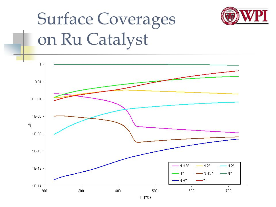 Surface Coverages on Ru Catalyst