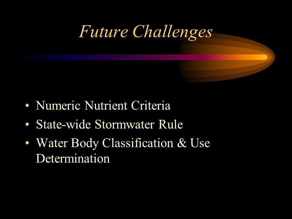 Future Challenges Numeric Nutrient Criteria State-wide Stormwater Rule Water Body Classification & Use Determination