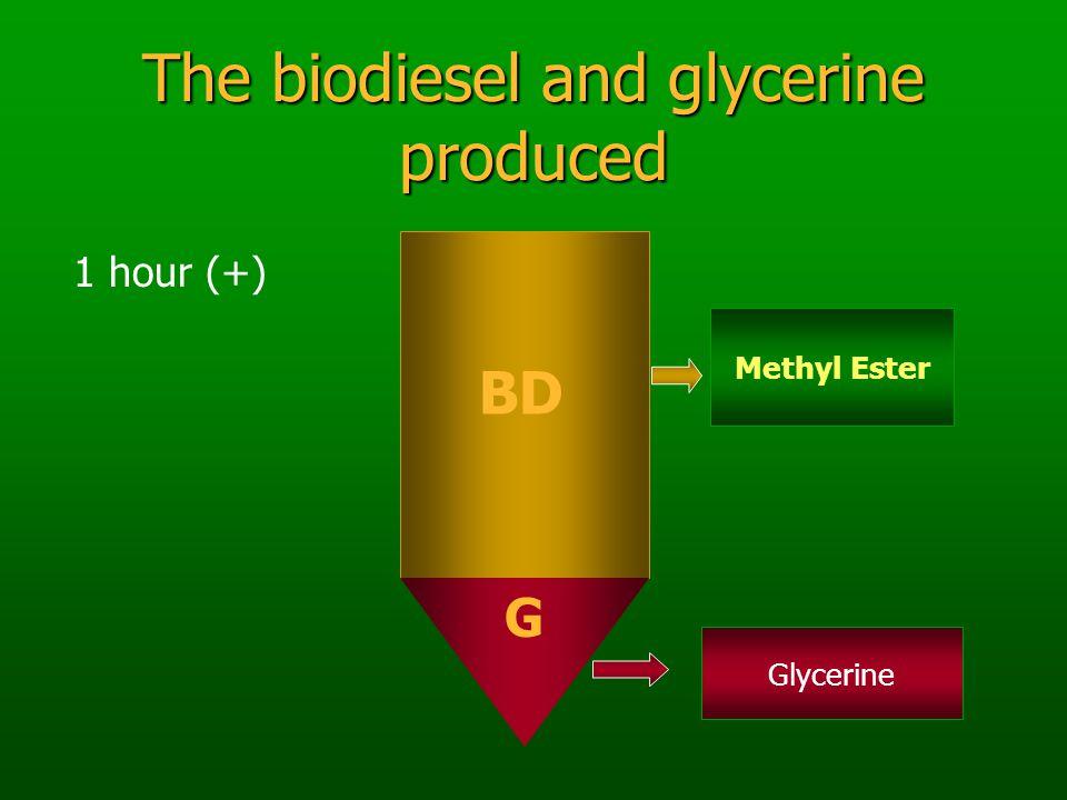 The biodiesel and glycerine produced BD G 1 hour (+) Methyl Ester Glycerine