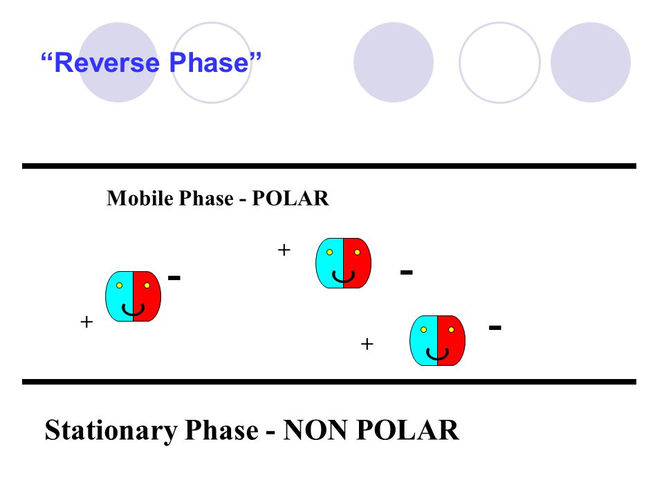 """Reverse Phase"" Stationary Phase - NON POLAR Mobile Phase - POLAR - + - - + +"