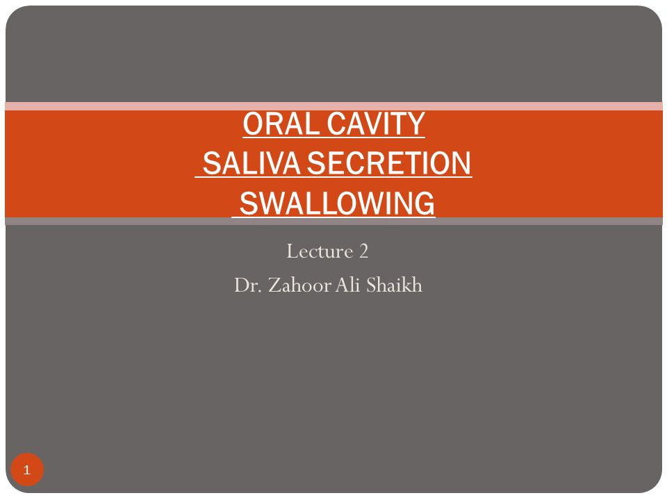 Lecture 2 Dr. Zahoor Ali Shaikh 1 ORAL CAVITY SALIVA SECRETION SWALLOWING