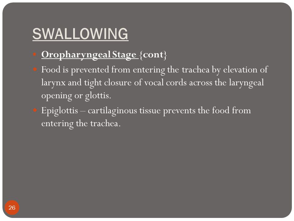 SWALLOWING  Oropharyngeal Stage {cont} Food is prevented from entering the trachea by elevation of larynx and tight closure of vocal cords across the