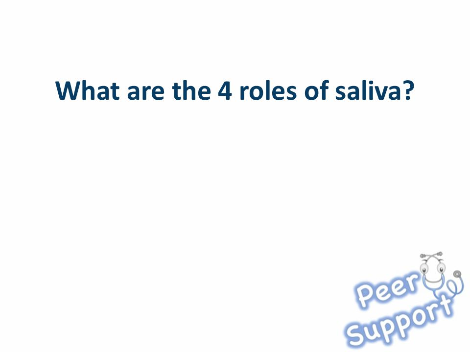 What are the 4 roles of saliva