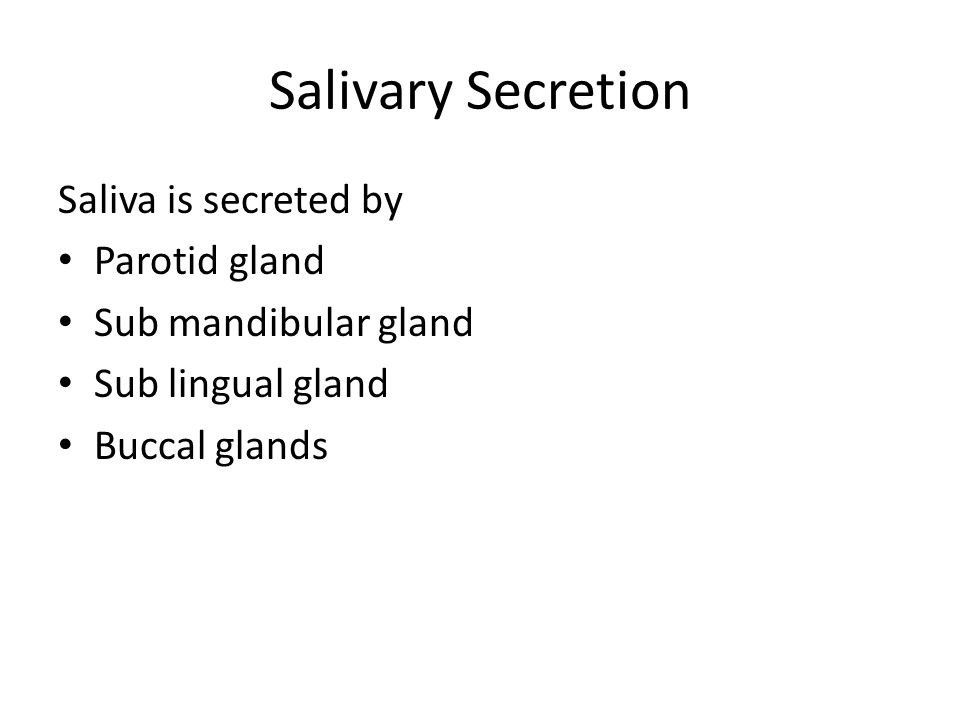 Salivary Secretion Saliva is secreted by Parotid gland Sub mandibular gland Sub lingual gland Buccal glands