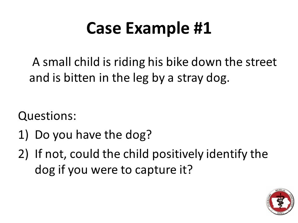 Case Example #1 A small child is riding his bike down the street and is bitten in the leg by a stray dog. Questions: 1)Do you have the dog? 2)If not,