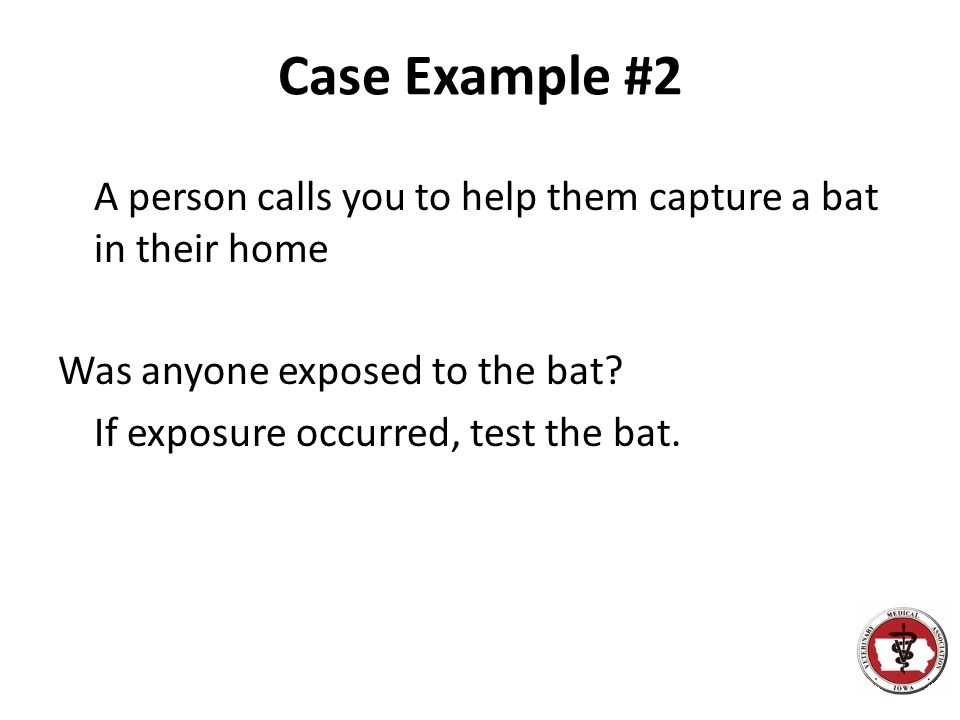 Case Example #2 A person calls you to help them capture a bat in their home Was anyone exposed to the bat? If exposure occurred, test the bat.
