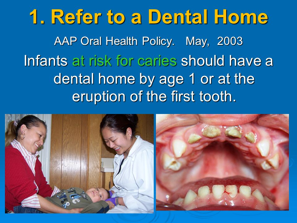 1. Refer to a Dental Home AAP Oral Health Policy. May, 2003 Infants at risk for caries should have a dental home by age 1 or at the eruption of the fi