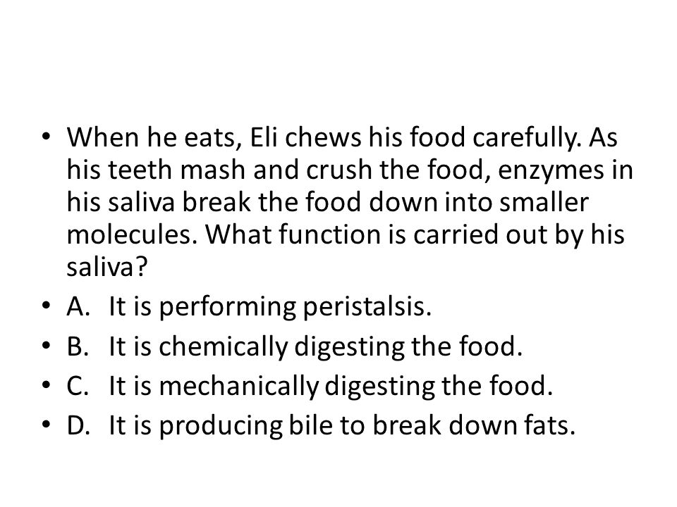 When he eats, Eli chews his food carefully. As his teeth mash and crush the food, enzymes in his saliva break the food down into smaller molecules. Wh