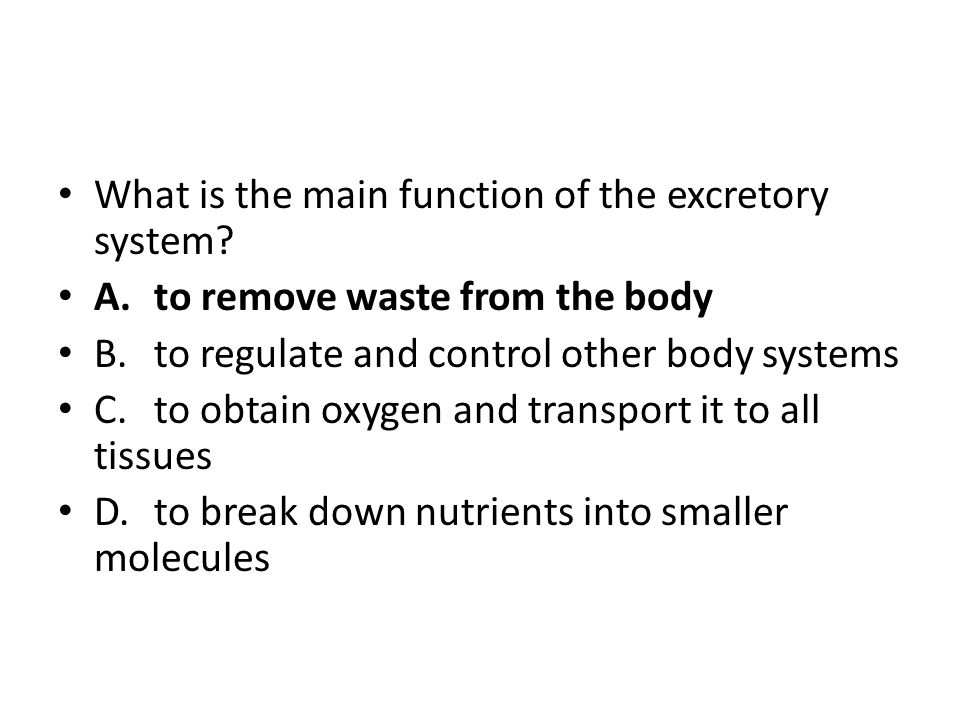 What is the main function of the excretory system? A.to remove waste from the body B.to regulate and control other body systems C.to obtain oxygen and