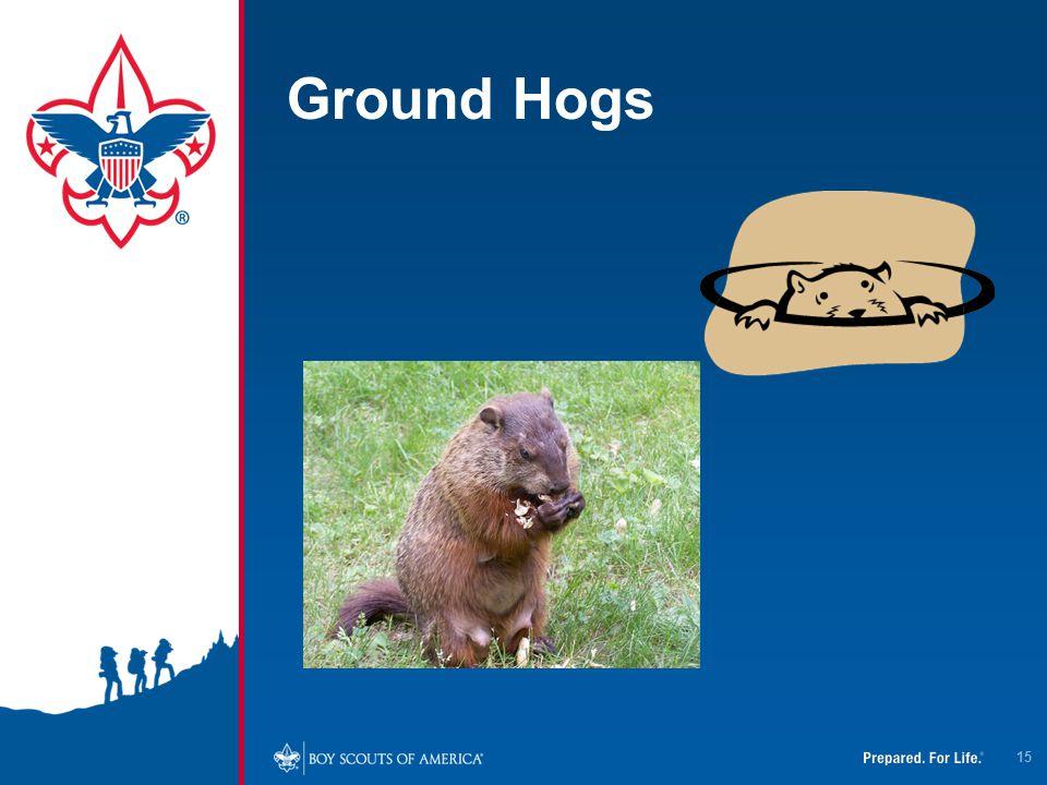 Ground Hogs 15
