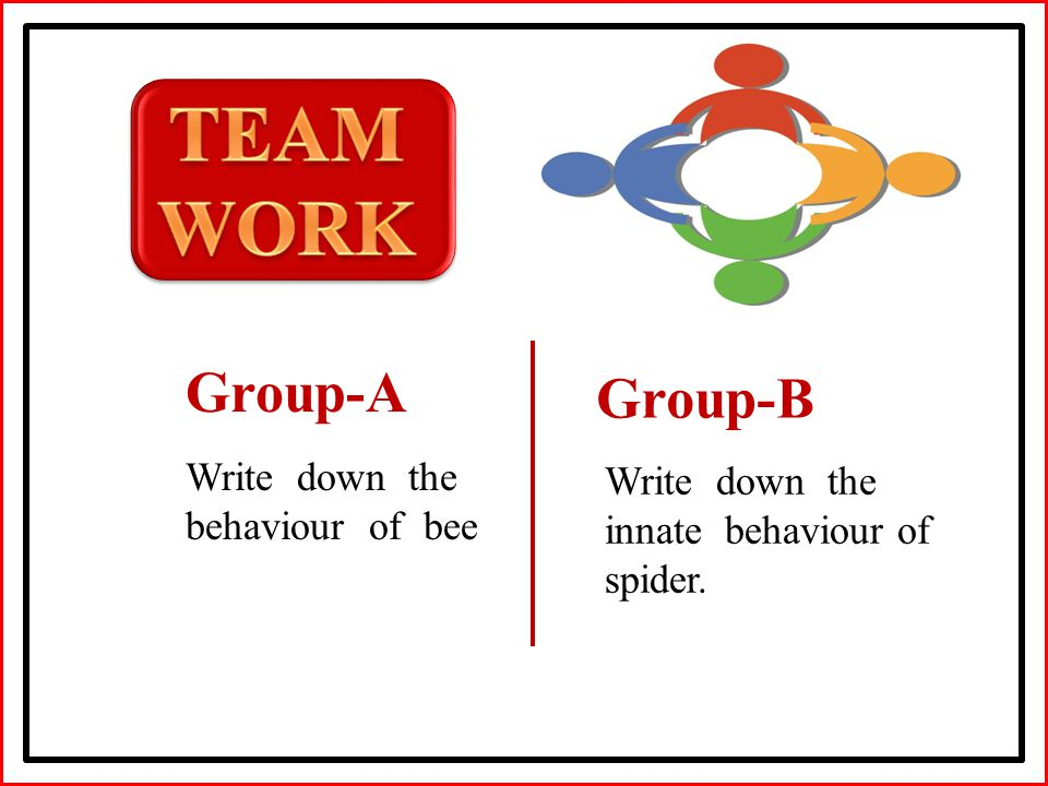 Group-A Group-B Write down the behaviour of bee Write down the innate behaviour of spider.