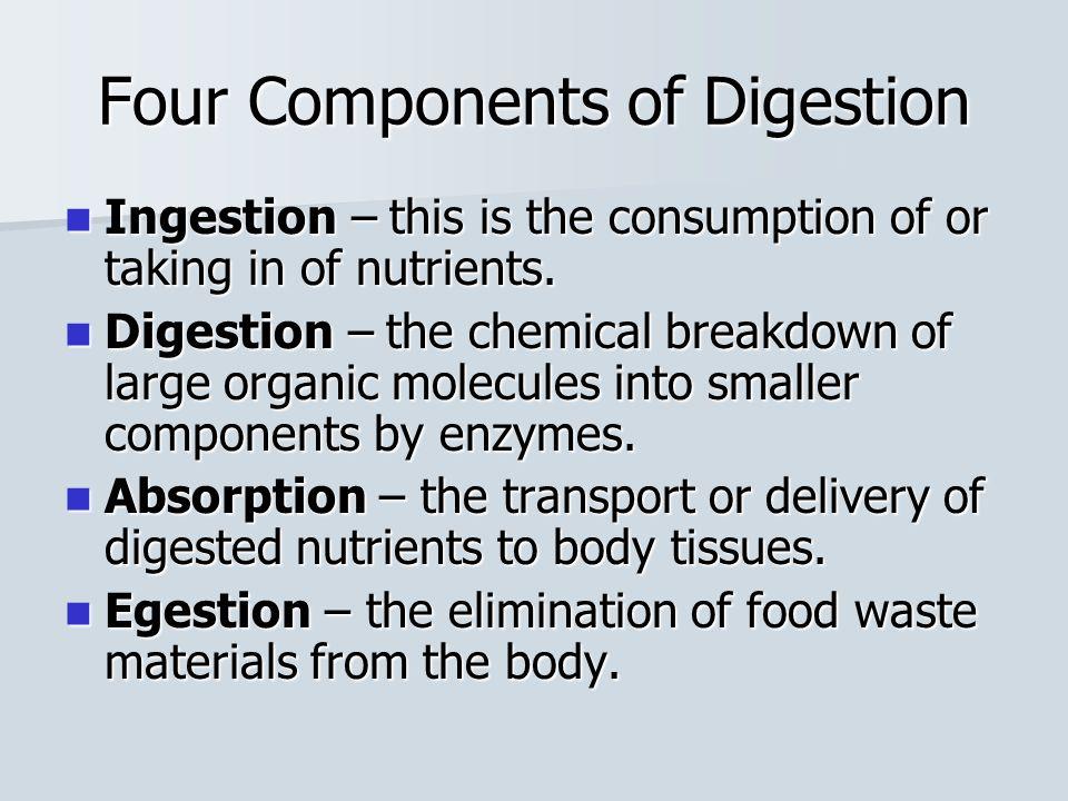 Large Intestine The large intestine comprises of the Colon, Cecum and the Rectum.