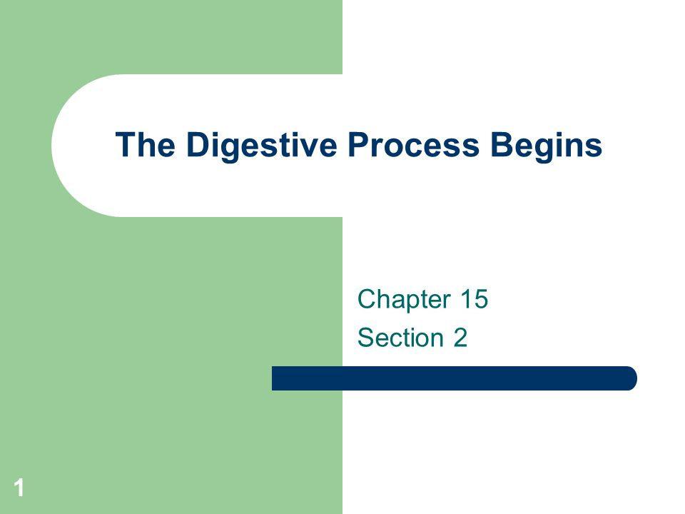 1 The Digestive Process Begins Chapter 15 Section 2