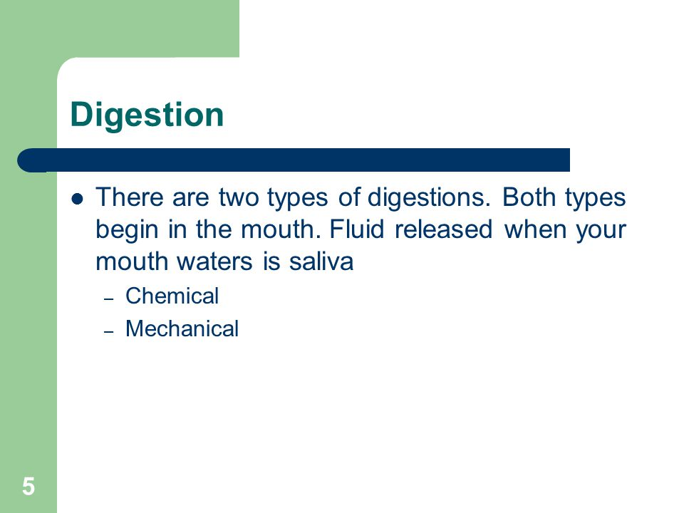 5 Digestion There are two types of digestions. Both types begin in the mouth. Fluid released when your mouth waters is saliva – Chemical – Mechanical
