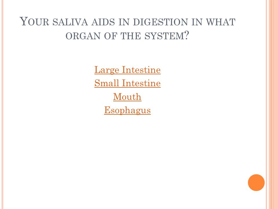 Y OUR SALIVA AIDS IN DIGESTION IN WHAT ORGAN OF THE SYSTEM ? Large Intestine Small Intestine Mouth Esophagus