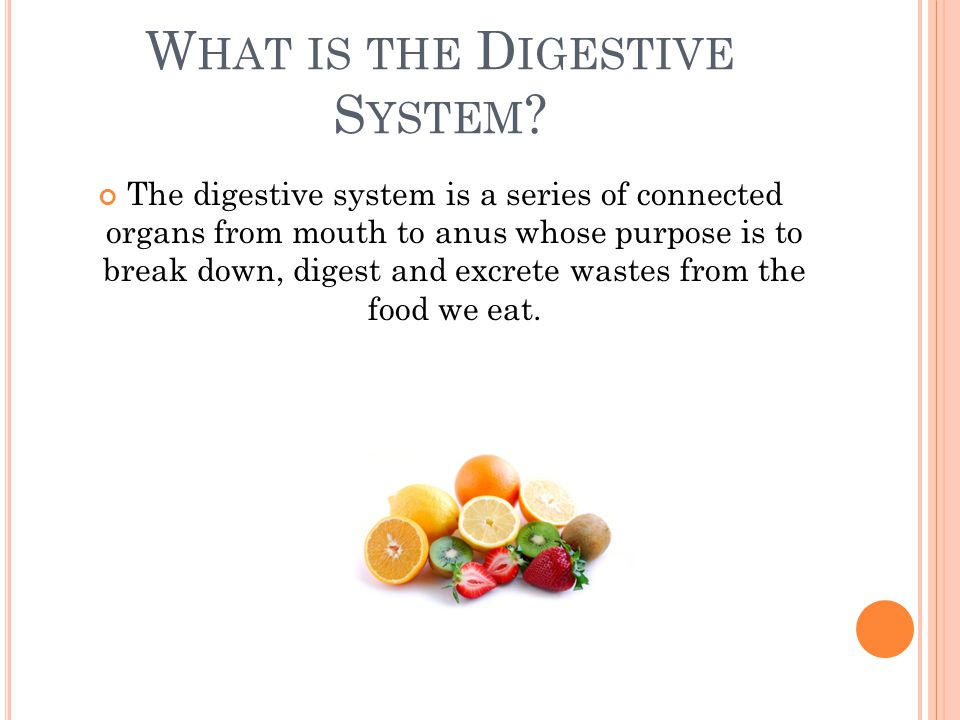 W HAT IS THE D IGESTIVE S YSTEM ? The digestive system is a series of connected organs from mouth to anus whose purpose is to break down, digest and e