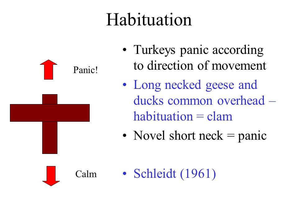 Habituation Panic! Calm Turkeys panic according to direction of movement Long necked geese and ducks common overhead – habituation = clam Novel short