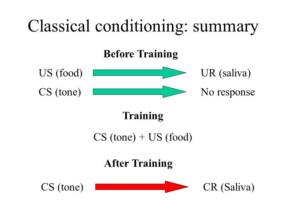 Classical conditioning: summary US (food)UR (saliva) Before Training CS (tone)No response CS (tone) +US (food) Training CS (tone)CR (Saliva) After Training
