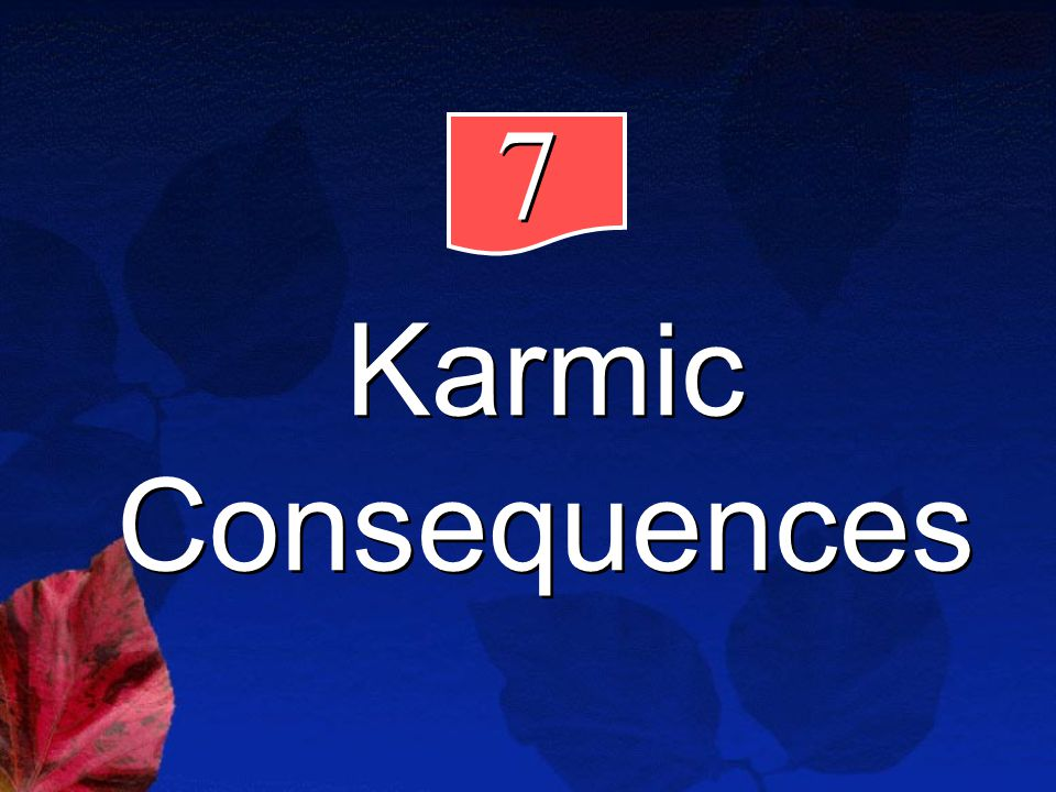 7 7 Karmic Consequences