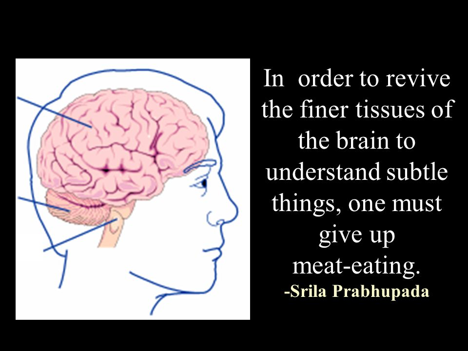 In order to revive the finer tissues of the brain to understand subtle things, one must give up meat-eating.