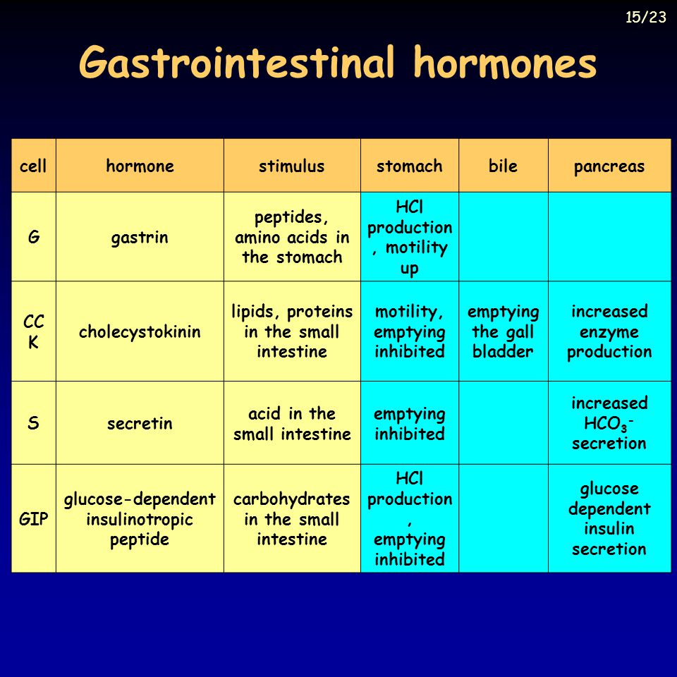 Gastrointestinal hormones cellhormonestimulusstomachbilepancreas Ggastrin peptides, amino acids in the stomach HCl production, motility up CC K cholecystokinin lipids, proteins in the small intestine motility, emptying inhibited emptying the gall bladder increased enzyme production Ssecretin acid in the small intestine emptying inhibited increased HCO 3 - secretion GIP glucose-dependent insulinotropic peptide carbohydrates in the small intestine HCl production, emptying inhibited glucose dependent insulin secretion 15/23