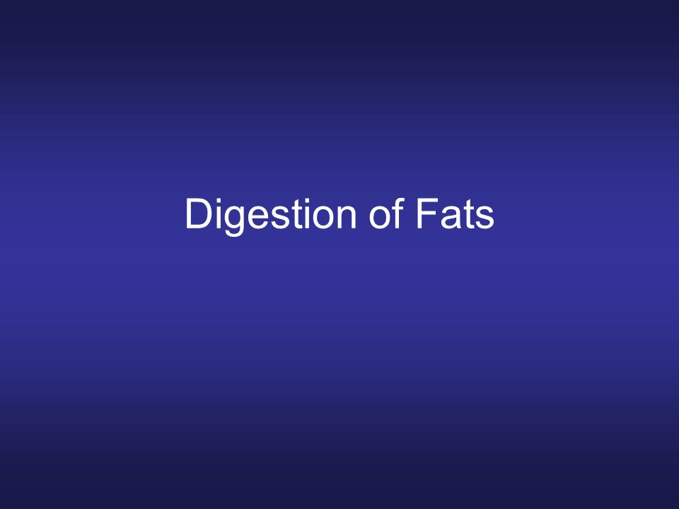 Digestion of Fats