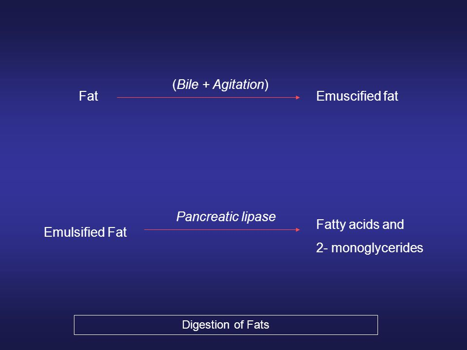 Fat (Bile + Agitation) Emuscified fat Fatty acids and 2- monoglycerides Pancreatic lipase Emulsified Fat Digestion of Fats