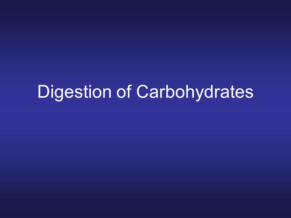 Digestion of Carbohydrates
