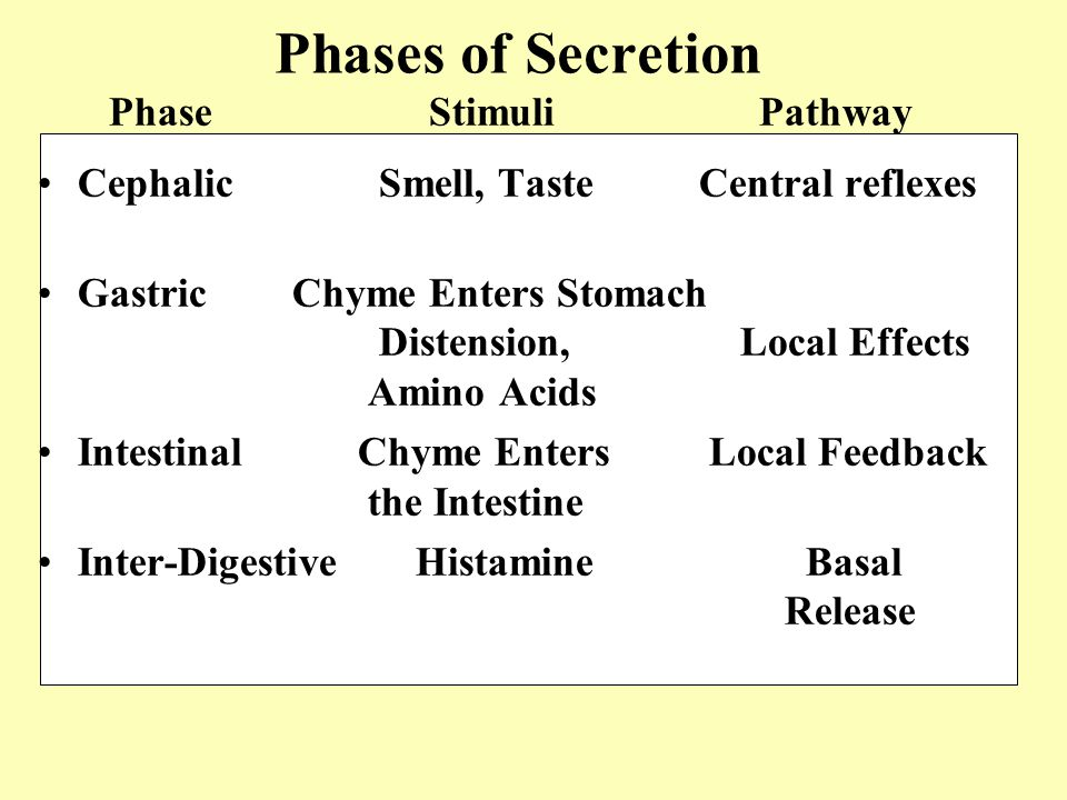 Phases of Secretion Cephalic Smell, Taste Central reflexes Gastric Chyme Enters Stomach Distension, Local Effects Amino Acids IntestinalChyme Enters L