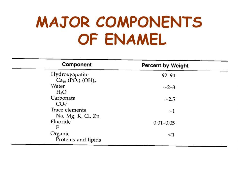 MAJOR COMPONENTS OF ENAMEL