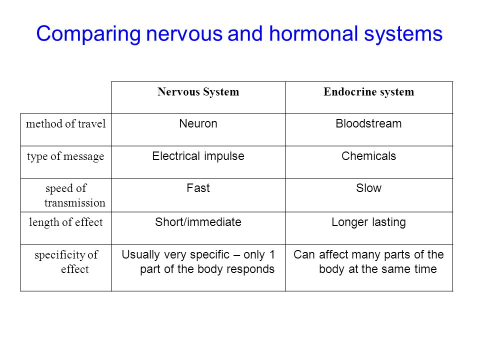 Comparing nervous and hormonal systems Nervous SystemEndocrine system method of travel NeuronBloodstream type of message Electrical impulseChemicals s