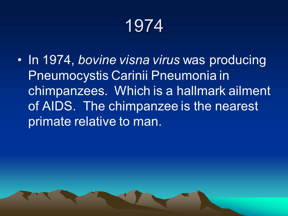 1974 In 1974, bovine visna virus was producing Pneumocystis Carinii Pneumonia in chimpanzees.
