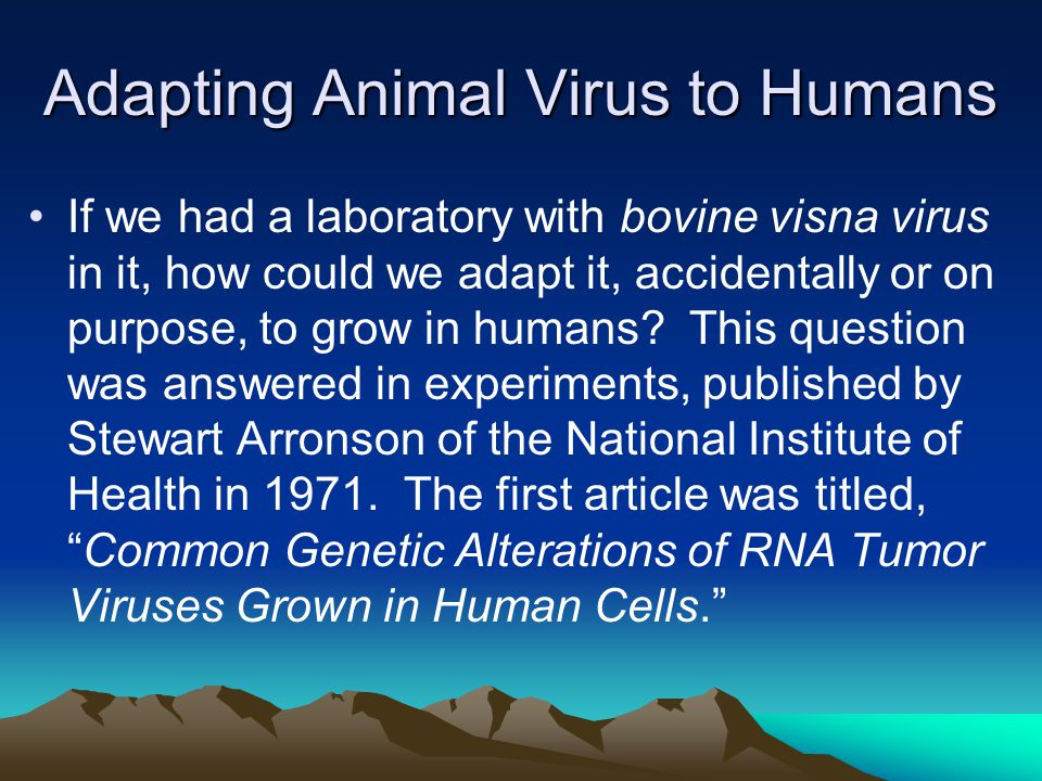 Adapting Animal Virus to Humans If we had a laboratory with bovine visna virus in it, how could we adapt it, accidentally or on purpose, to grow in humans.