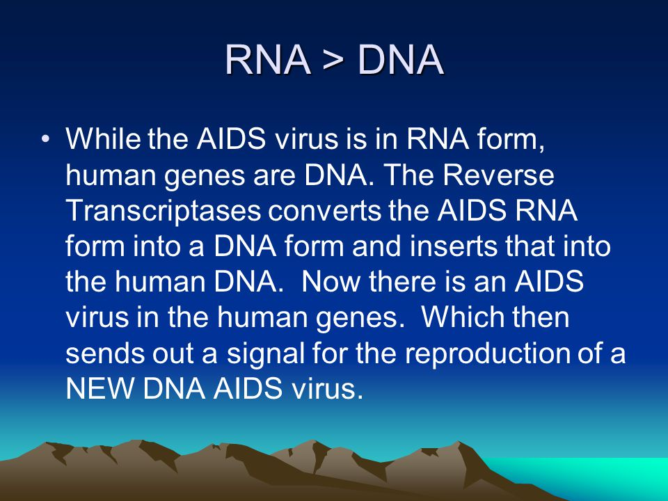 RNA > DNA While the AIDS virus is in RNA form, human genes are DNA.