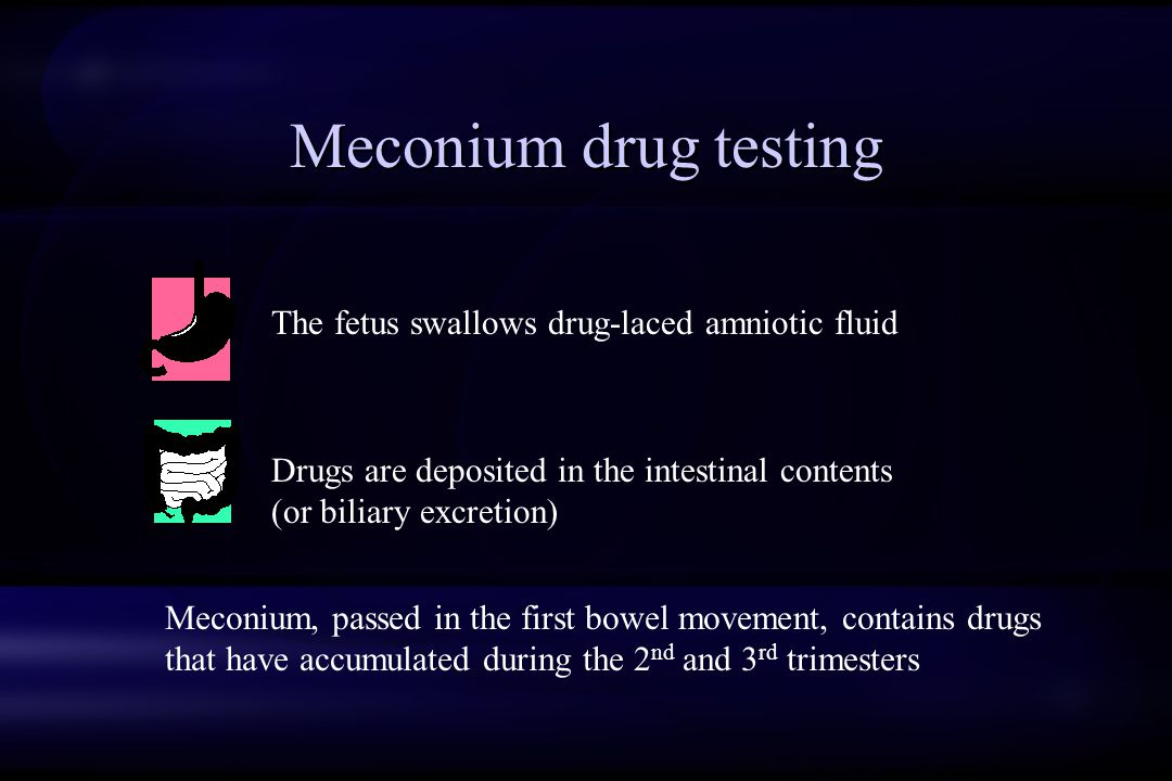 Meconium drug testing The fetus swallows drug-laced amniotic fluid Drugs are deposited in the intestinal contents (or biliary excretion) Meconium, passed in the first bowel movement, contains drugs that have accumulated during the 2 nd and 3 rd trimesters