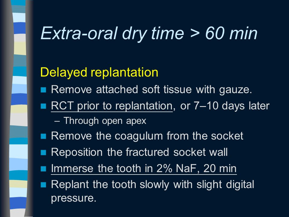 Extra-oral dry time > 60 min Delayed replantation Remove attached soft tissue with gauze.