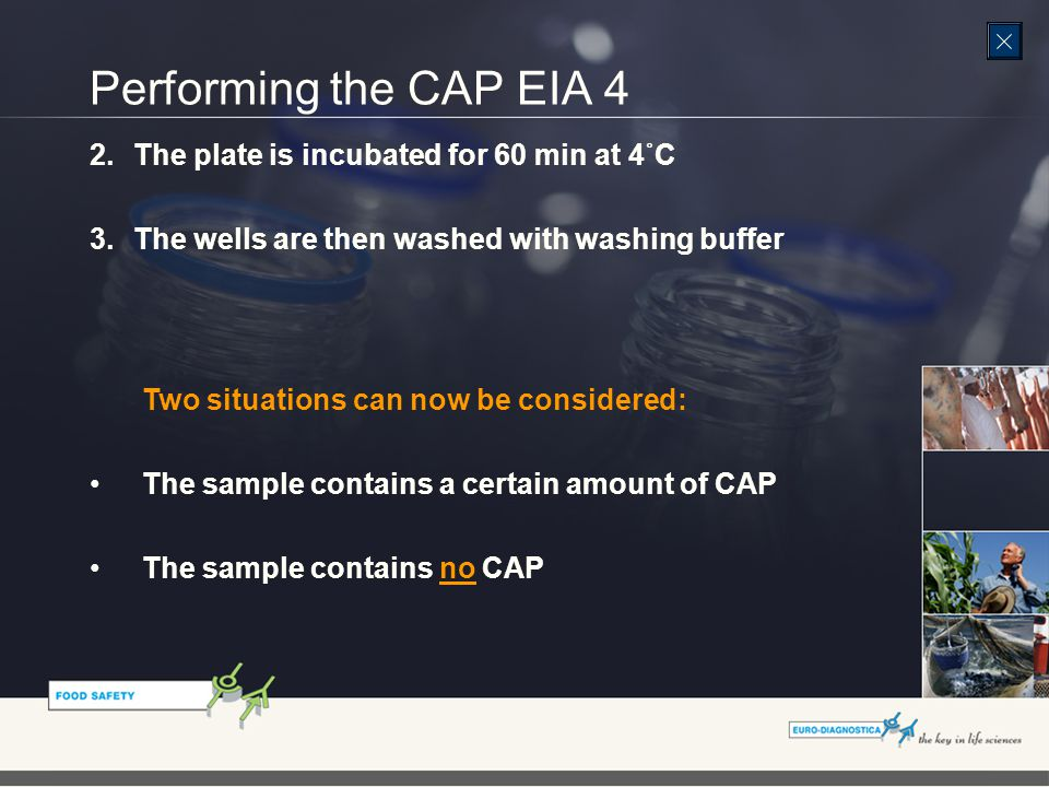 2.The plate is incubated for 60 min at 4˚C 3.The wells are then washed with washing buffer Two situations can now be considered: The sample contains a certain amount of CAP The sample contains no CAP Performing the CAP EIA 4