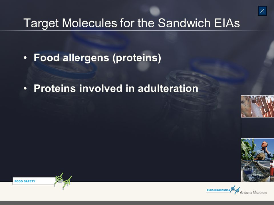 Target Molecules for the Sandwich EIAs Food allergens (proteins) Proteins involved in adulteration