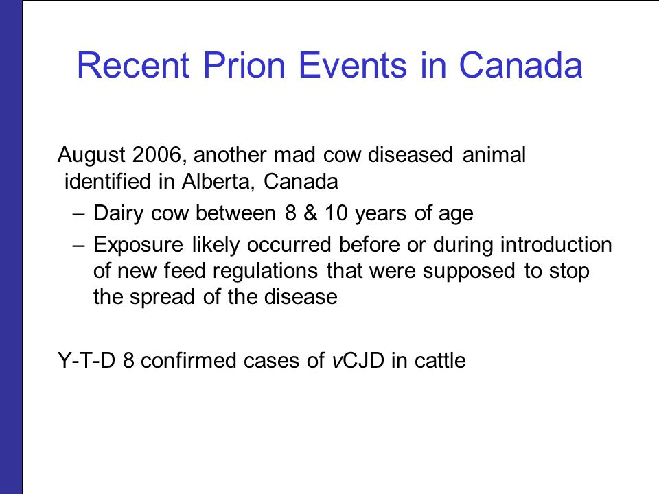 Recent Prion Events in Canada August 2006, another mad cow diseased animal identified in Alberta, Canada –Dairy cow between 8 & 10 years of age –Exposure likely occurred before or during introduction of new feed regulations that were supposed to stop the spread of the disease Y-T-D 8 confirmed cases of vCJD in cattle