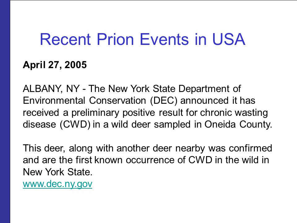 April 27, 2005 ALBANY, NY - The New York State Department of Environmental Conservation (DEC) announced it has received a preliminary positive result for chronic wasting disease (CWD) in a wild deer sampled in Oneida County.