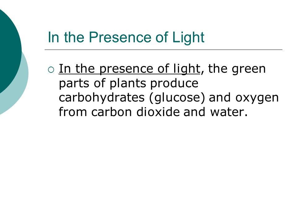 In the Presence of Light  In the presence of light, the green parts of plants produce carbohydrates (glucose) and oxygen from carbon dioxide and water.