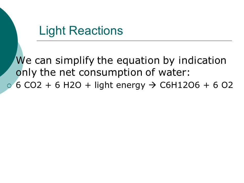 Light Reactions  We can simplify the equation by indication only the net consumption of water:  6 CO2 + 6 H2O + light energy  C6H12O6 + 6 O2